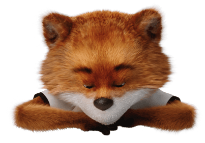 CARFAX Europa – CAR FOX